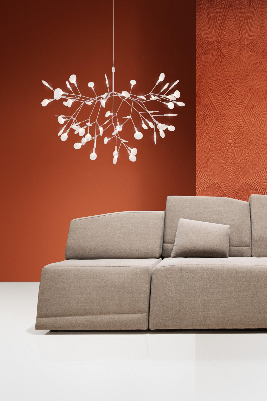 Heracleum White: nouveau Victors Design Agency